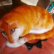 Carmels kattentaart